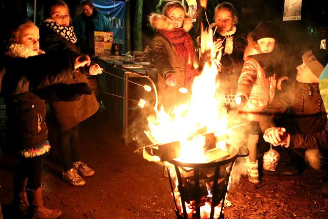 Kerst in Hoessenbosch