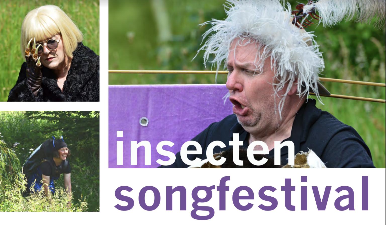 Insecten songfestival